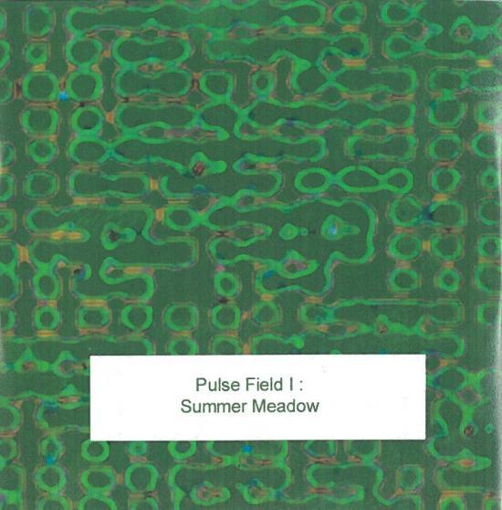 pulse field