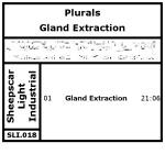 plurals sli 018