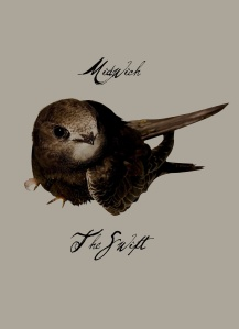 midwich - the swift cover