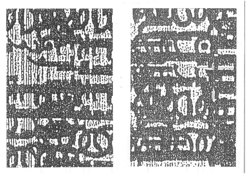 urban organic morphologies: publications by michael clough (6/6)