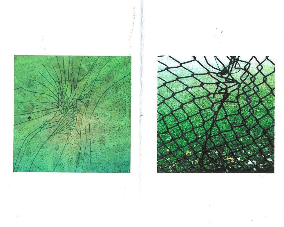 urban organic morphologies: publications by michael clough (3/6)