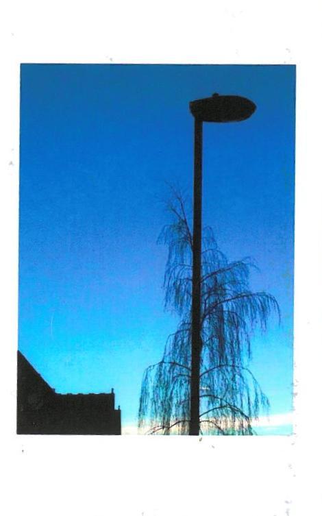 urban organic morphologies: publications by michael clough (2/6)