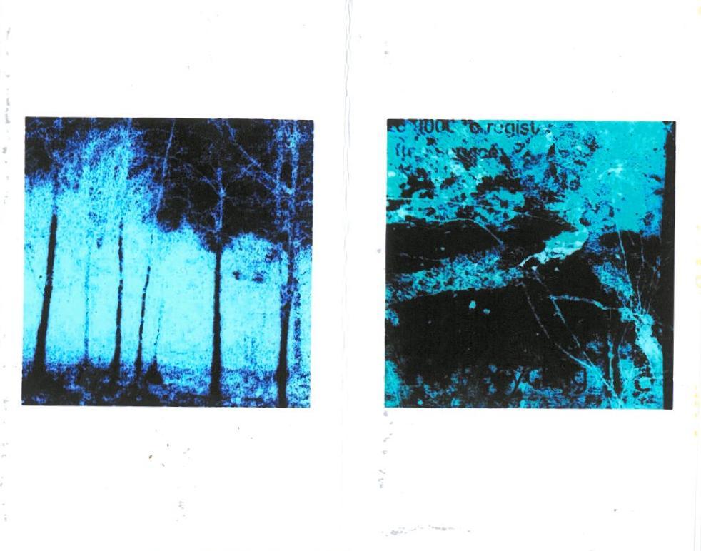 urban organic morphologies: publications by michael clough (4/6)