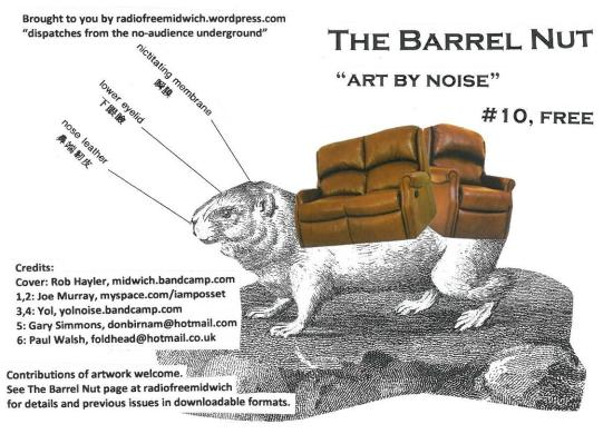 The Barrel Nut issue 10 cover