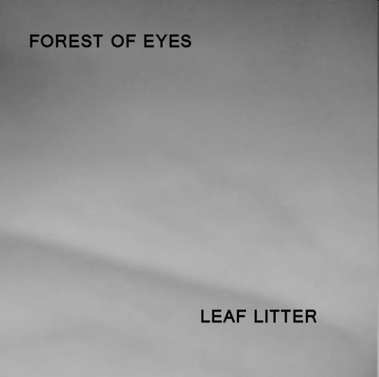 forest of eyes - leaf litter