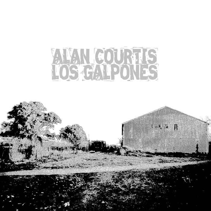 alan courtis