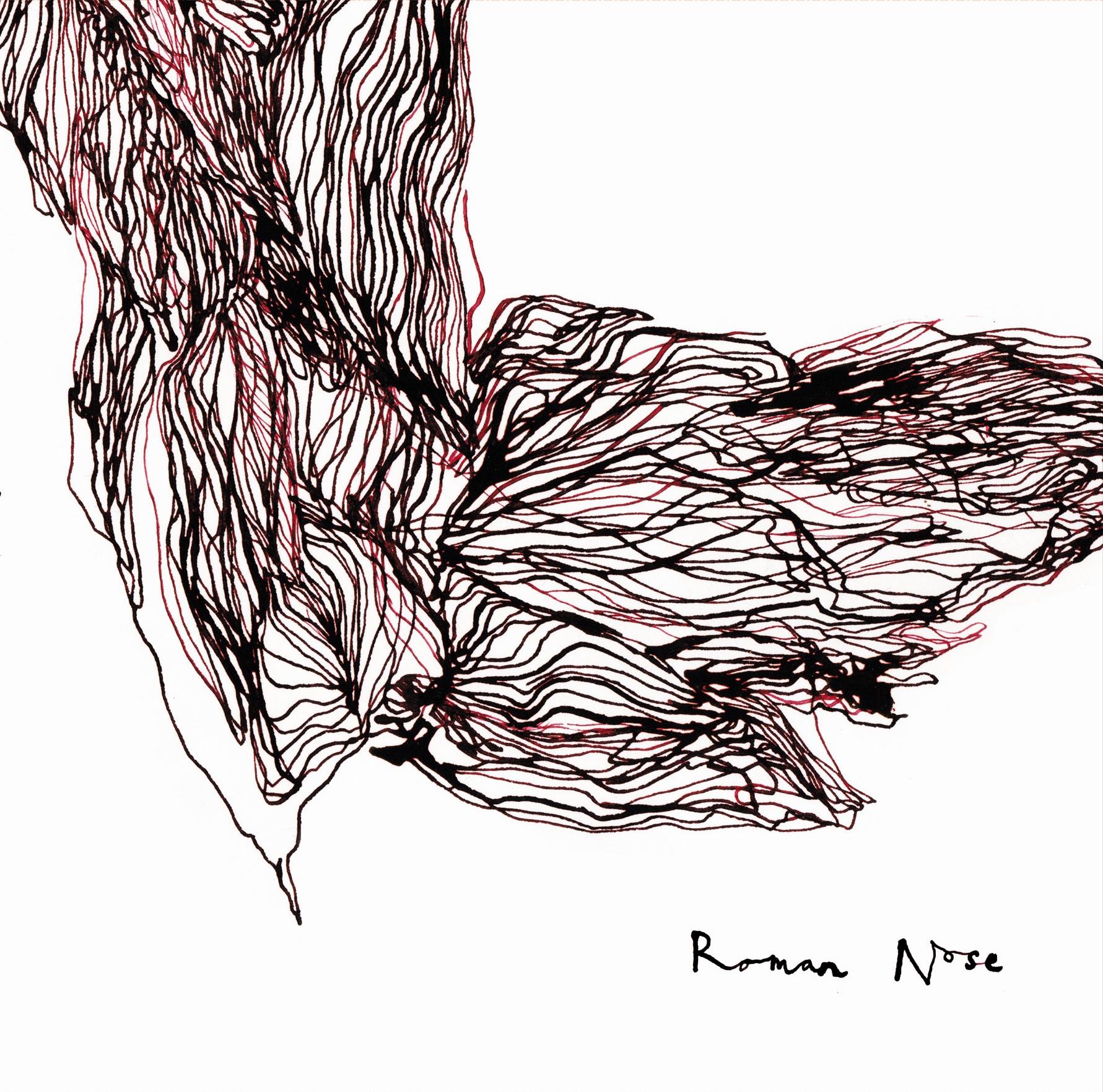 ROMAN-NOSE-LP-front